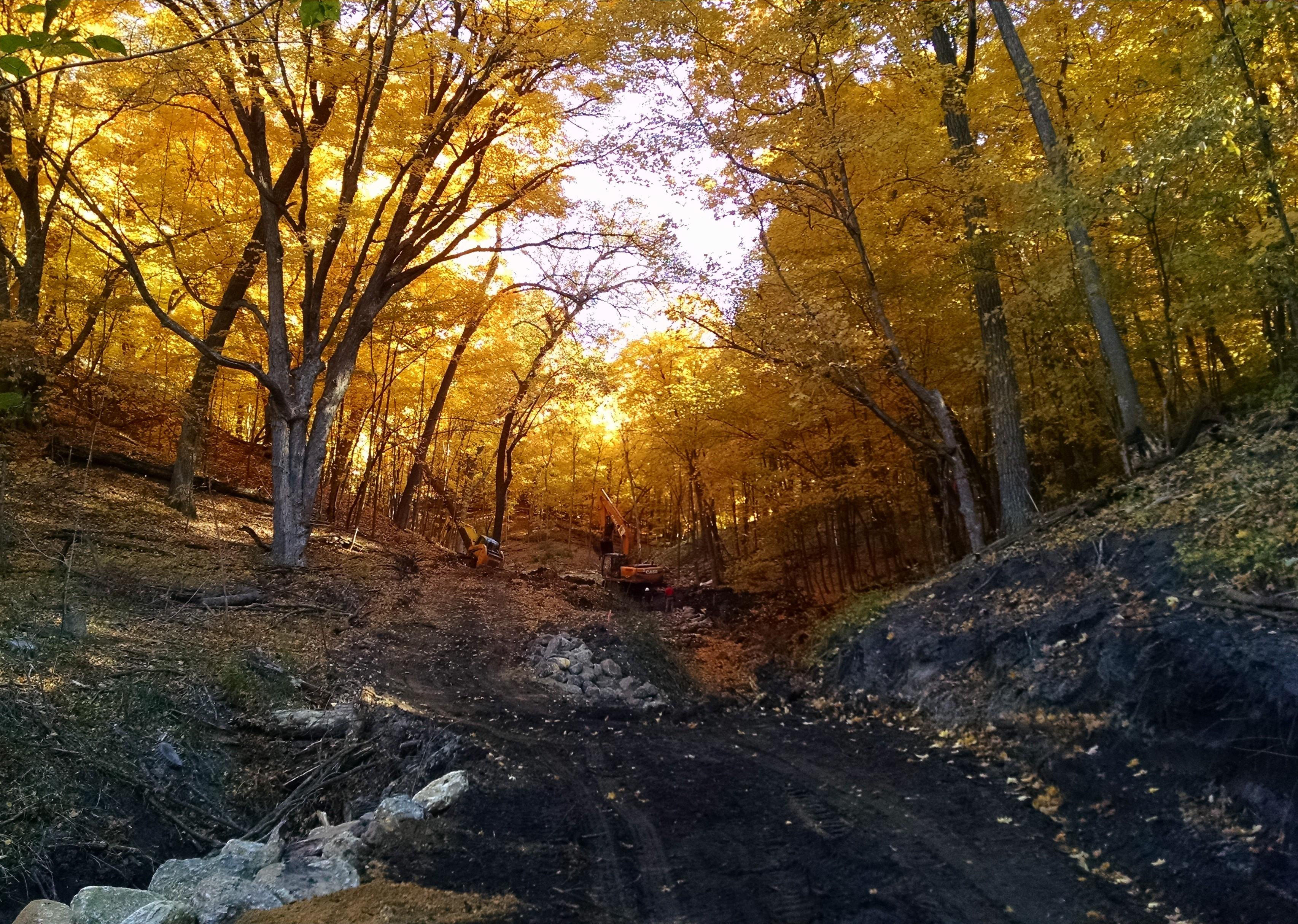 Home Minnesota Native Landscapes Your Ecological Restoration