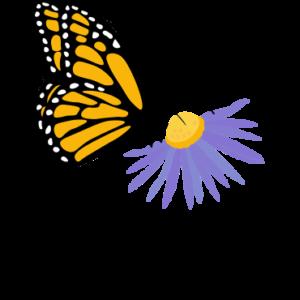 Monarch Joint Venture